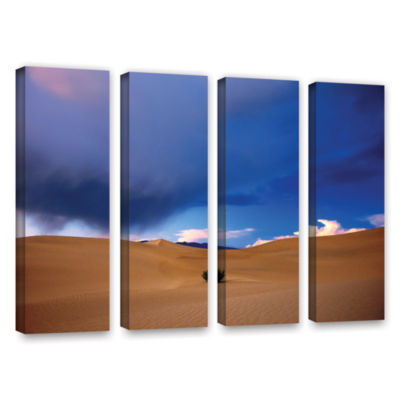 Brushstone Brushstone Death Valley Winter 4-pc. Gallery Wrapped Canvas Wall Art