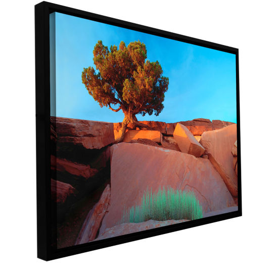 Brushstone Dead Horse Point Gallery Wrapped Floater-Framed Canvas Wall Art