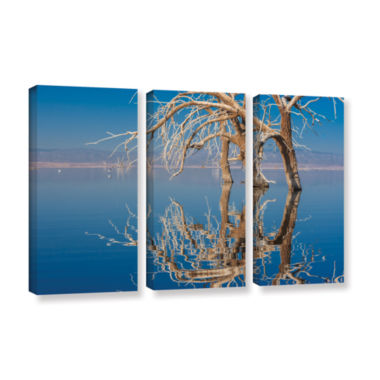 Brushstone Dead Arch 3-pc. Canvas Art