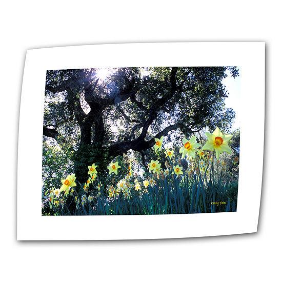 Brushstone Daffodils And The Oak Canvas Wall Art