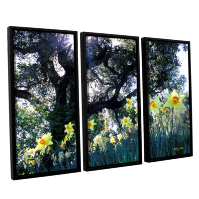 Brushstone Daffodils And The Oak 3-pc. Floater Framed Canvas Wall Art