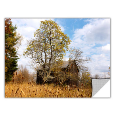 Brushstone Cvnp Barn Removable Wall Decal