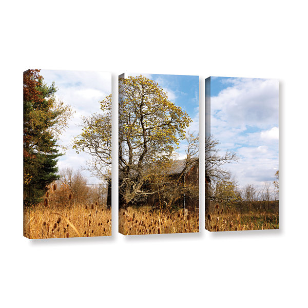 Brushstone Brushstone Cvnp Barn 3-pc. Gallery Wrapped Canvas Wall Art