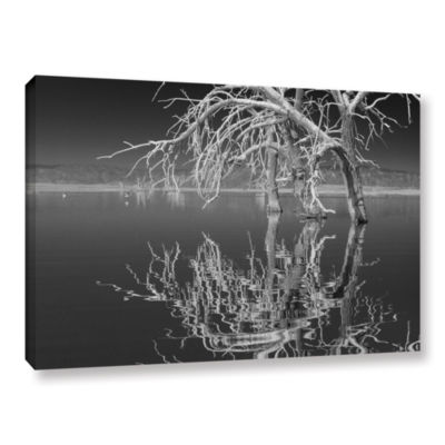 Brushstone Brushstone Dead Arch Black And White Gallery Wrapped Canvas Wall Art