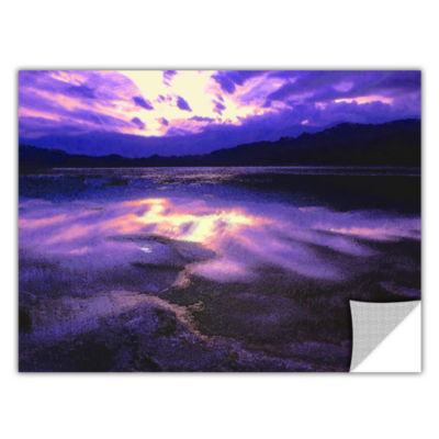 Brushstone Death Valley Winter Removable Wall Decal