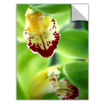 Brushstone Cymbidium Seafoam Emerald Orchid Removable Wall Decal