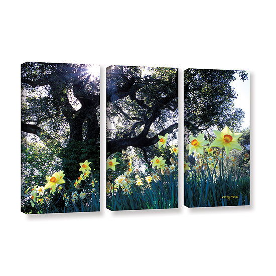 Brushstone Brushstone Daffodils And The Oak 3-pc.Gallery Wrapped Canvas Wall Art