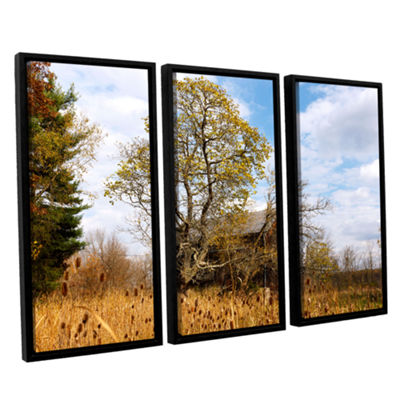 Brushstone Cvnp Barn 3-pc. Floater Framed Canvas Wall Art