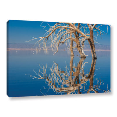 Brushstone Brushstone Dead Arch Gallery Wrapped Canvas Wall Art