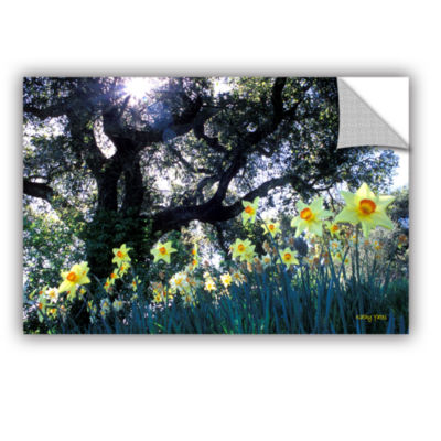 Brushstone Daffodils And The Oak Removable Wall Decal