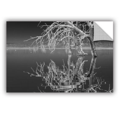 Brushstone Dead Arch Black And White Removable Wall Decal