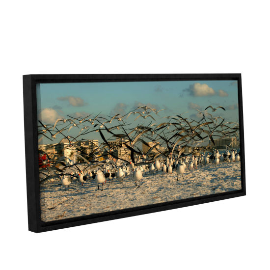 Brushstone Crazy Birds Gallery Wrapped Floater-Framed Canvas Wall Art