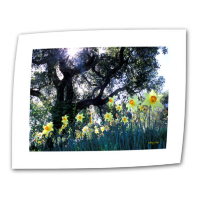 Brushstone Daffodils And The Oak Canvas Wall Art