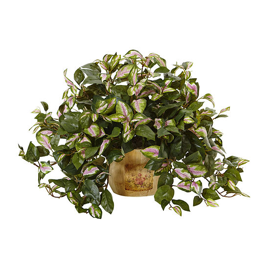 Nearly Natural Hoya In Wooden Pot