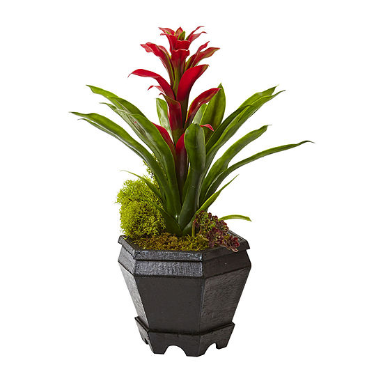 Nearly Natural Red Bromeliad In Black Hexagon Planter