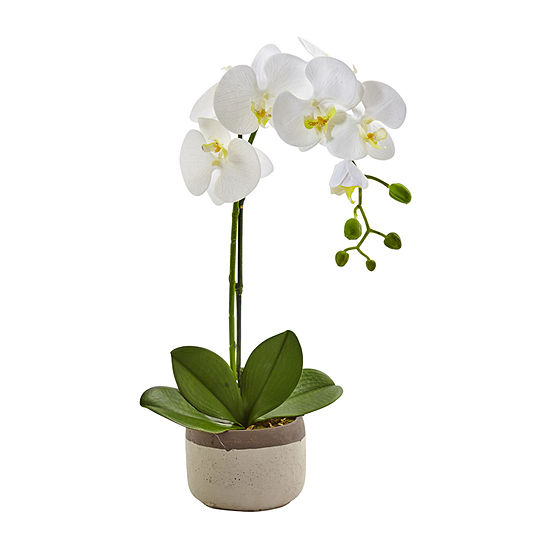Nearly Natural Phalaenopsis Orchid In Ceramic Pot Artificial Flowers