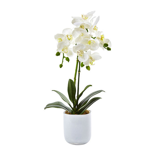 Nearly Natural Phalaenopsis In Frosted Glass Artificial Flowers