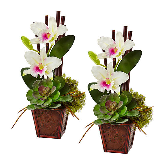 Nearly Natural White Cattleya Orchid And Succulent Arrangement (Set Of 2) Artificial Flowers