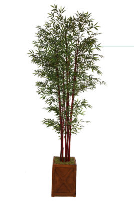 "Laura Ashley 101""Tall Harvest Bamboo Tree In 13"" Planter"