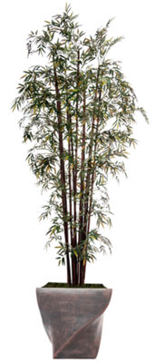 "Laura Ashley 102"" Tall Harvest Bamboo Tree In 17"" Planter"