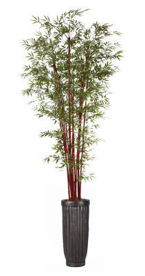 """Laura Ashely 113"""" Tall Harvest Bamboo Tree In Cylinder Planter"""