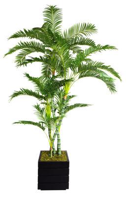 78 Inch Tall Palm Tree In 14 Inch Modern Fiberstone Planter