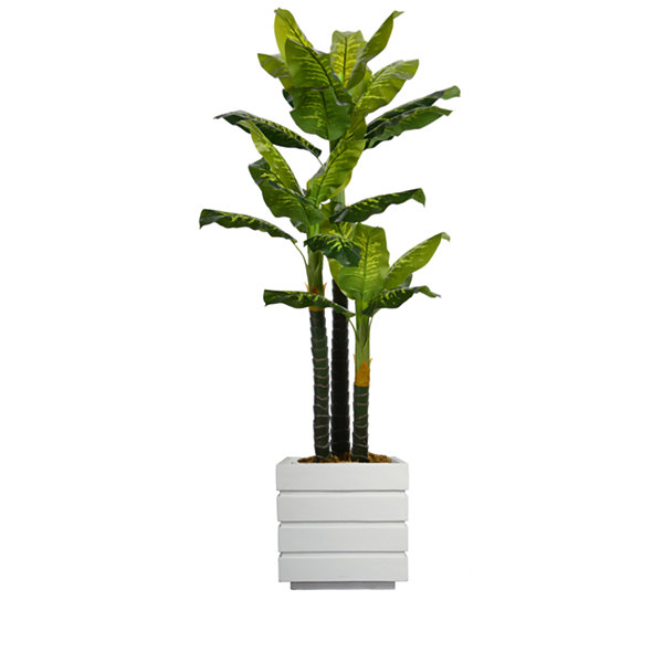 Laura Ashley 78 Inch Tall Real Touch Evergreen In Modern Planter