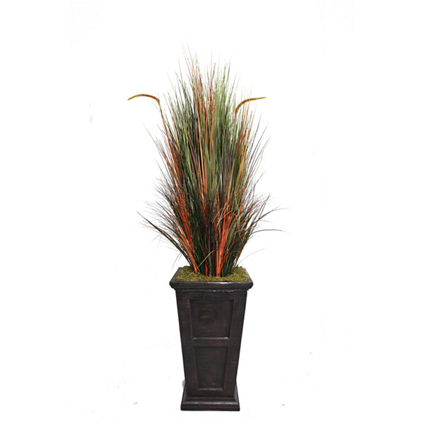 Laura Ashley 79 Inch Tall Onion Grass With Cattails In 16 Inch Planter