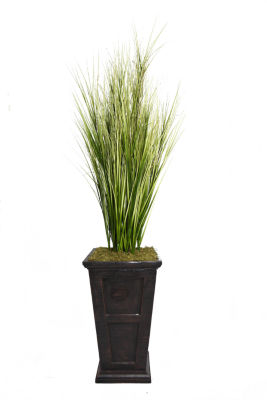 79 Inch Tall Onion Grass With Twigs In 16 Inch Planter