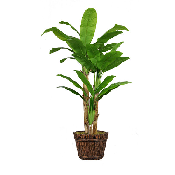 Laura Ashley 80 Inch Tall Banana Tree With Real Touch Leaves In Planter