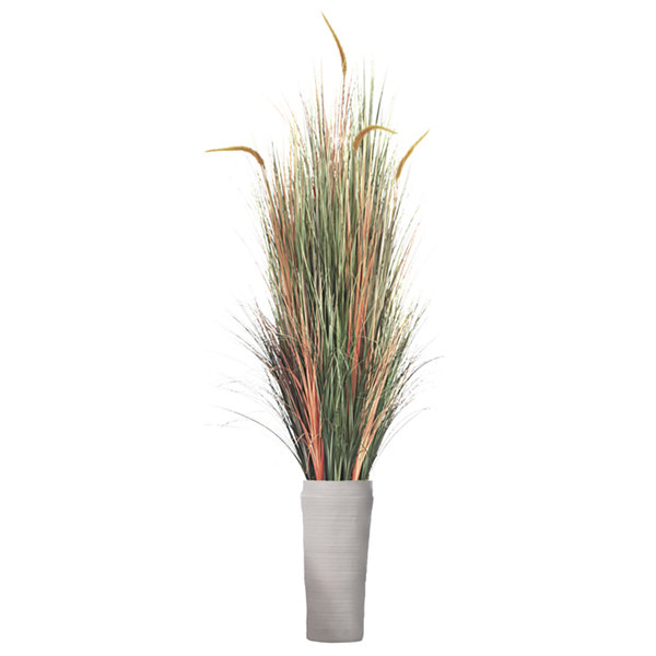 81 Inch Tall Onion Grass With Cattail In Planter