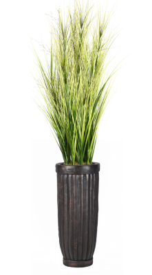 81 Inch Tall Onion Grass With Twigs In Cylinder Planter
