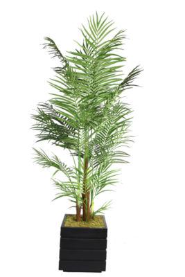 82 Inch Tall Areca Palm Tree In 14 Inch Modern Fiberstone Planter