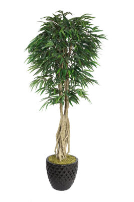 Laura Ashley 84 Inch Tall Willow Ficus With Multiple Trunks In Planter