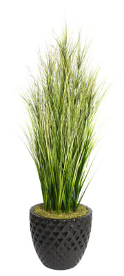 66 Inch Tall Onion Grass With Twigs In 16 Inch Planter