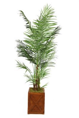 Laura Ashley 85 Inch Tall Areca Palm Tree In 13 Inch Fiberstone Planter