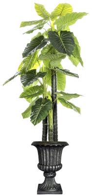 Laura Ashley 85.5 Inch Tall Indoor/Outdoor Elephant Ear Plant In Fiberstone Urn