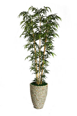86 Inch Tall Natural Bamboo Tree In 16 Inch Faux-Pebble Planter