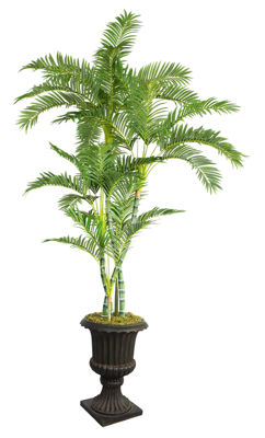 Laura Ashley 86 Inch Tall Palm Tree In 16 Inch Fiberstone Planter