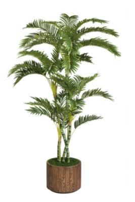 77 Inch Tall Palm Tree In 16 Inch Fiberstone Planter