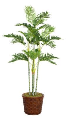 73 Inch Tall Palm Tree In 17 Inch Fiberstone Planter