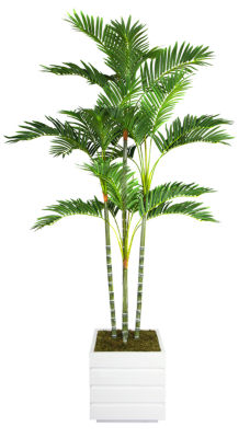 74 Inch Tall Palm Tree In 14 Inch Fiberstone Planter