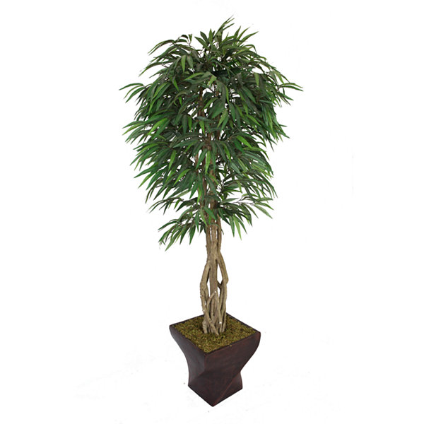 Laura Ashley 88 Inch Tall Willow Ficus With Multiple Trunks In Planter