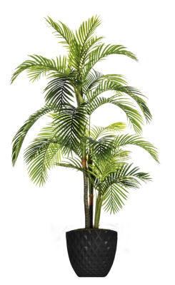 89.6 Inch Tall Palm Tree In Honeycomb Pot