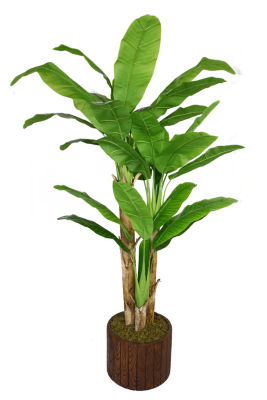 Laura Ashley 77 Inch Tall Banana Tree With Real Touch Leaves In Planter