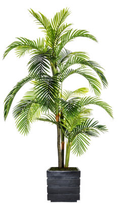 Laura Ashley 90 Inch Tall Palm Tree In Modern Fiberstone Pot