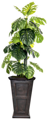 Laura Ashley 90.8 Inch Tall Indoor/Outdoor Monstera Ceriman In Fiberstone Pot
