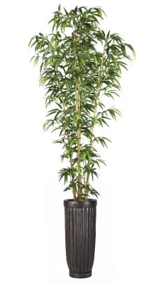 93 Inch Bamboo Tree In Natural Poles In Cylinder Planter