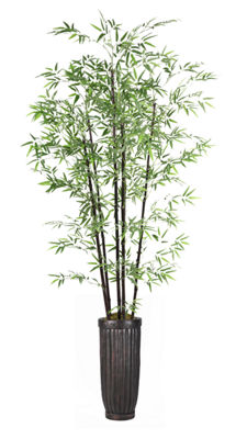 93 Inch Tall Bamboo Tree In Cylinder Planter