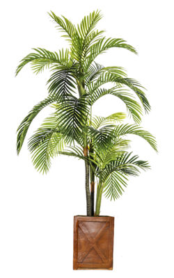 Laura Ashley 93 Inch Tall Palm Tree In Fiberstone Pot